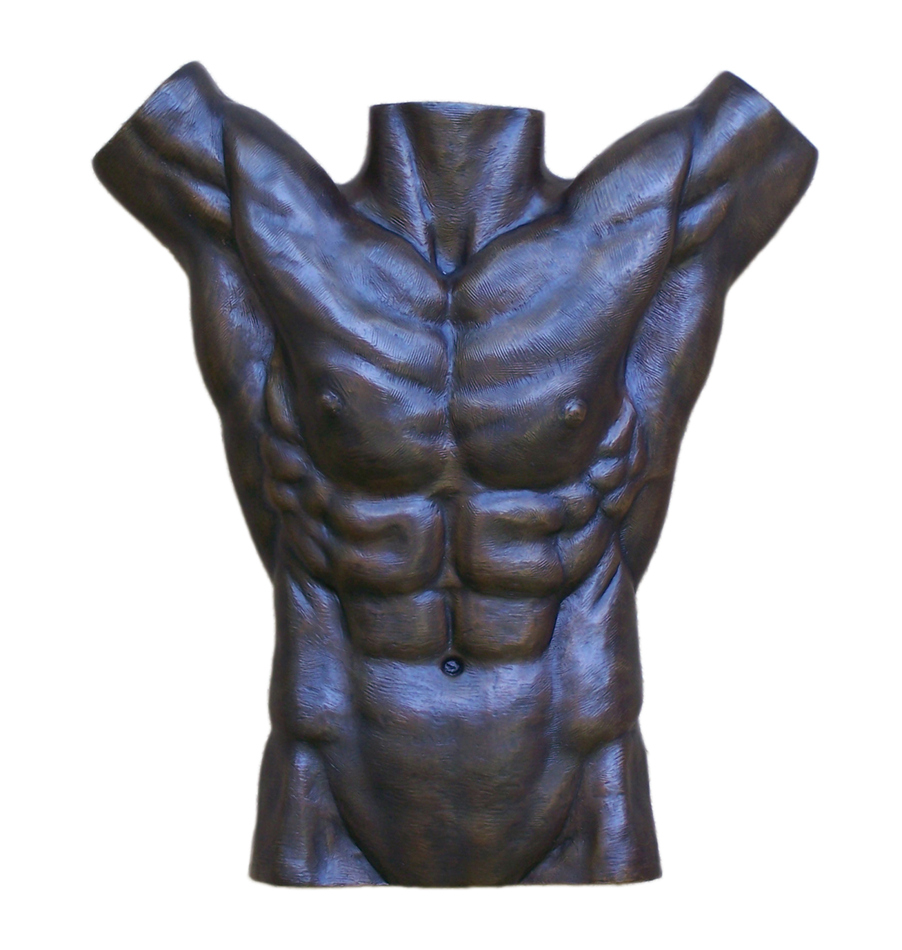 Bronze Nude Male Torso Wall Sculpture